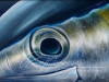 'Eye's on the Prize' (Tuna Eye)