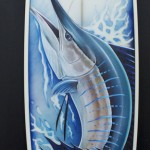 Board_Sailfish